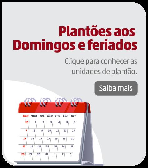 Plantões aos Domingos e Feriados Alvaro
