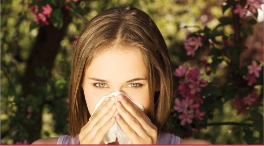 laboratorio exame alergia