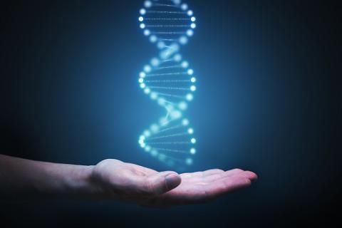 Exames Genéticos Previlab
